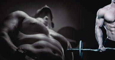 Protein-Präparate für den Muskelaufbau